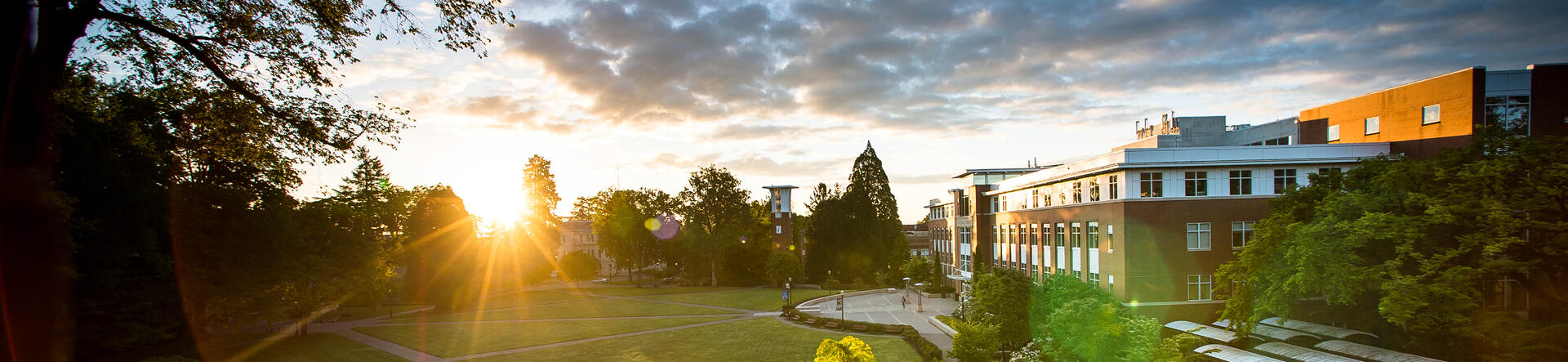 sunrise-over-library-quad